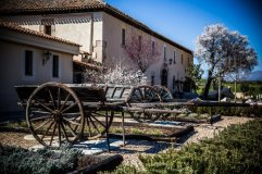 Casa de los Oficios, Torremocha del Jarama